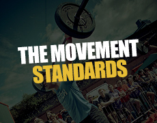THE MOVEMENT STANDARDS